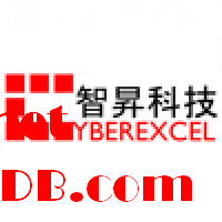 Channel & Marketing Manager, Cyberexcel Technology Limited